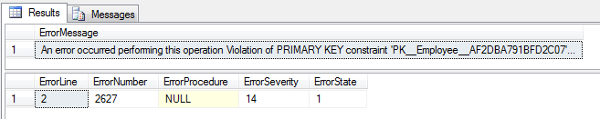 sql primary key exception details
